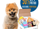 Last Call: Pooch Perks Second Anniversary Sale: 50% Off First Box!