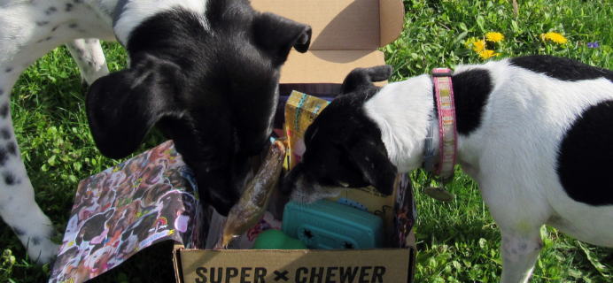 Barkbox April 2017 Subscription Box Review – Super Chewer