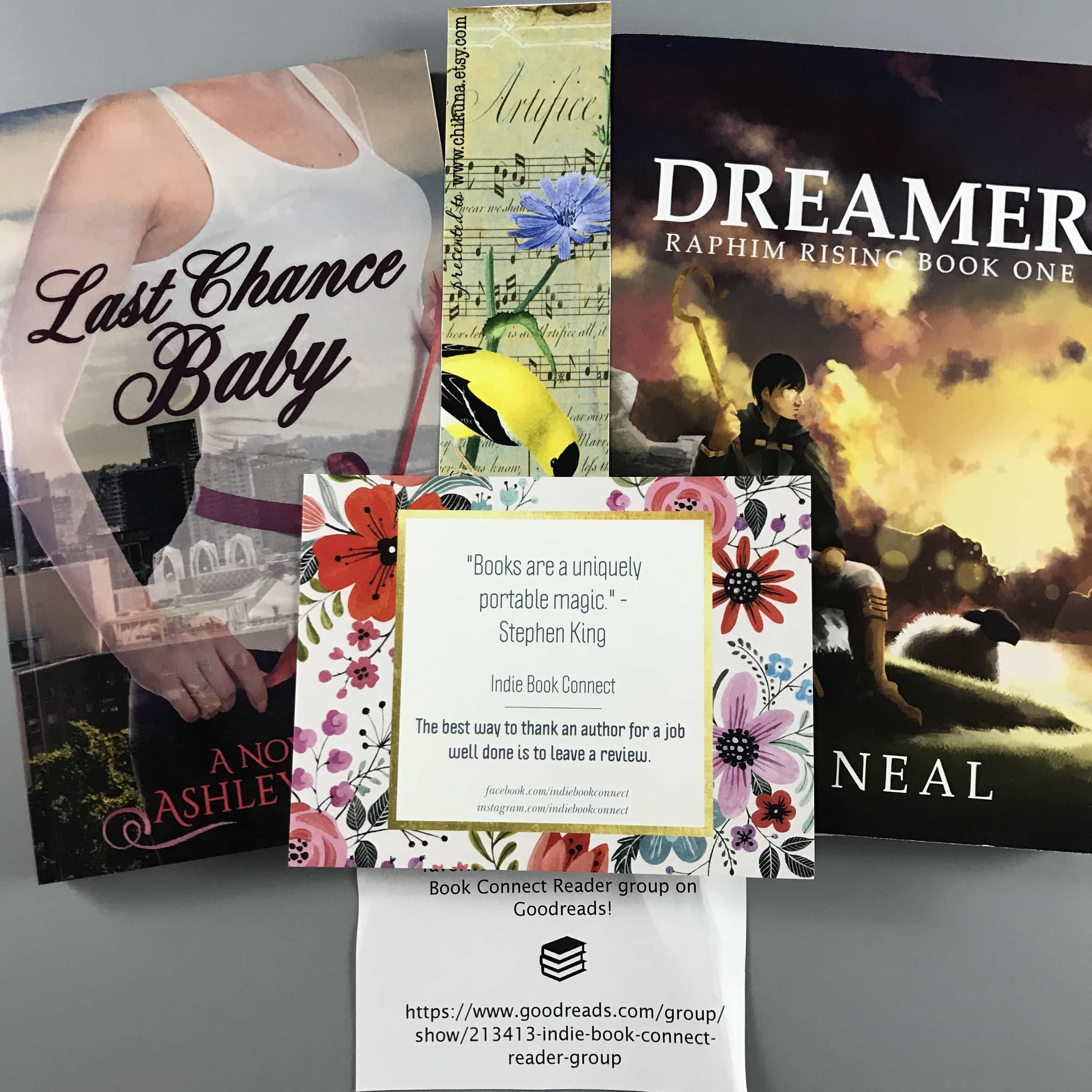 Indie Book Connect Subscription Box Review + Coupon – April 2017