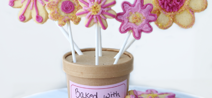 Foodstirs Darling Daisy Cookie Bouquet Kit Giveaway!