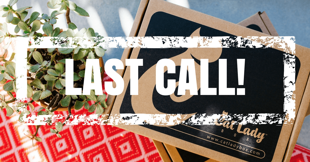 Last Call for Cat Lady Box June 2017 Box + 15% Off Coupon!