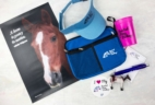 Painted Pony Package May 2017 Subscription Box Review