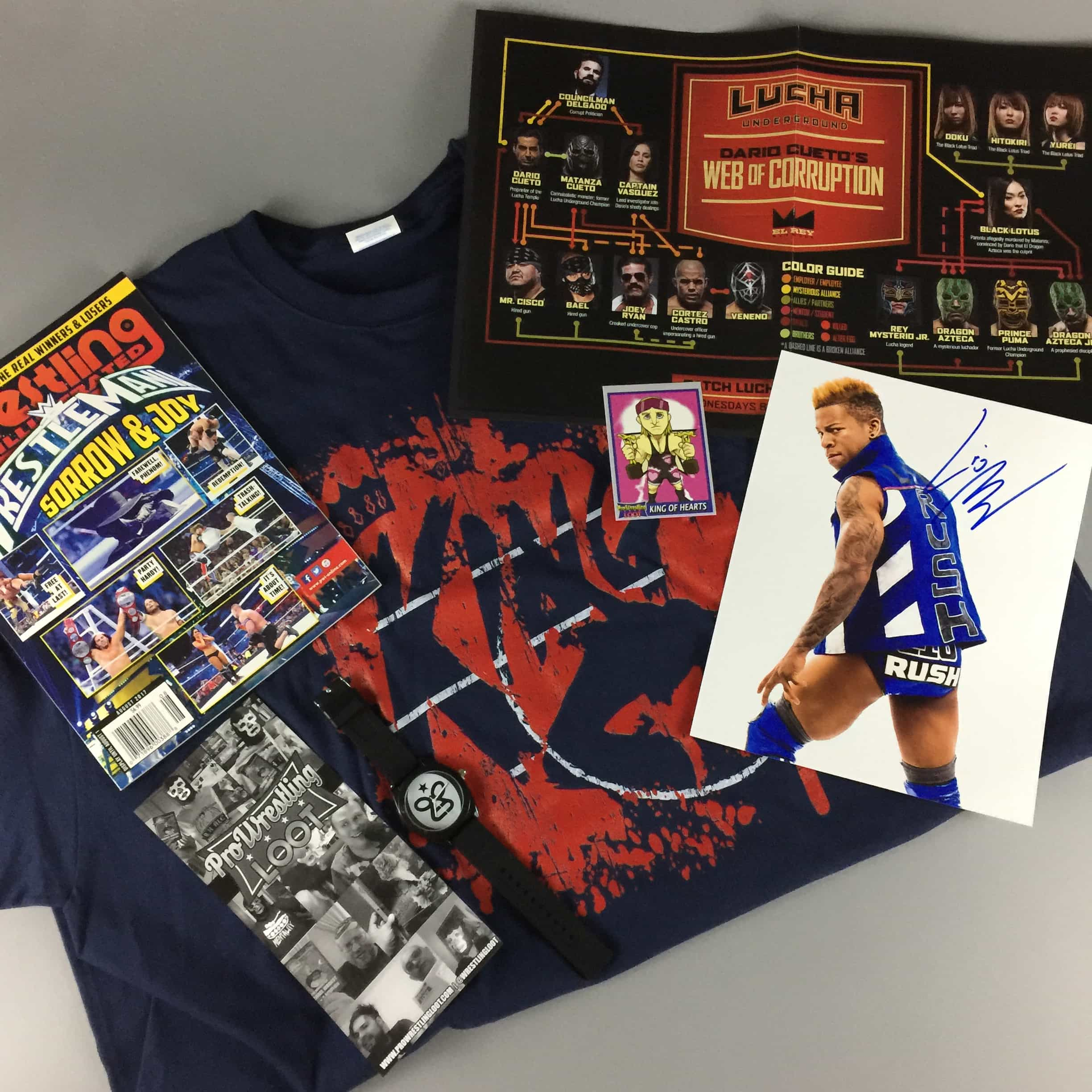 Pro Wrestling Loot June 2017 Subscription Box Review + Coupon