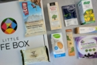 Little Life Box Subscription Box Review + Coupon – June 2017