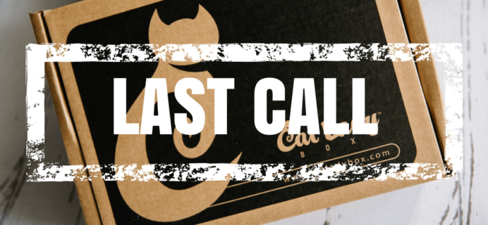 Cat Lady Box Coupon: 15% Off All Subscriptions! Last Call!