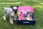 PupJoy June 2017 Subscription Box Review + Coupon