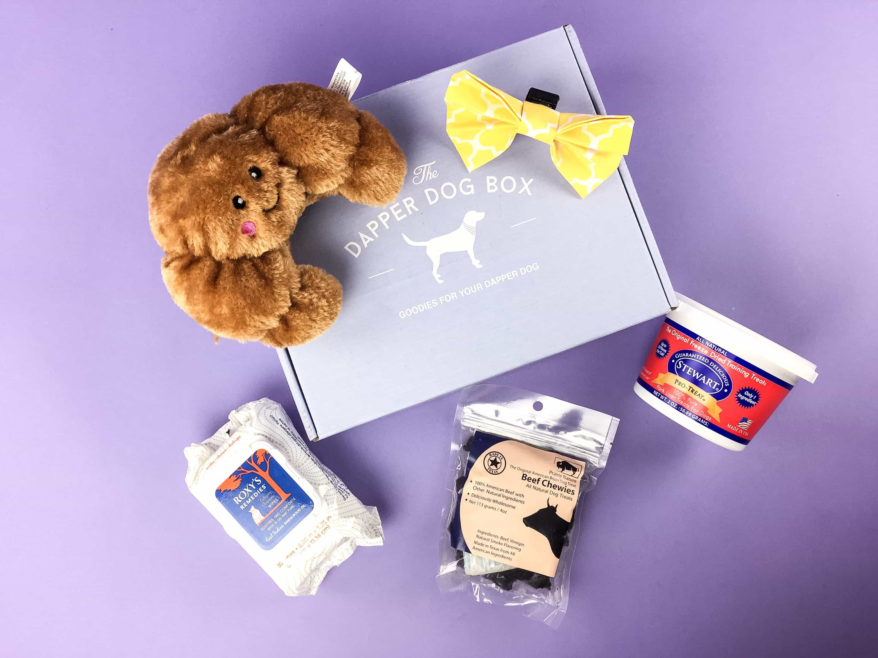 The Dapper Dog Box June 2017 Subscription Box Review + Coupon
