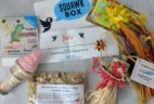 Squawk Box Subscription Box Review – July 2017
