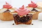 Foodstirs Coupon: August 2017 Campfire S'Mores Brownie Cupcake Kit $10.99 Shipped!