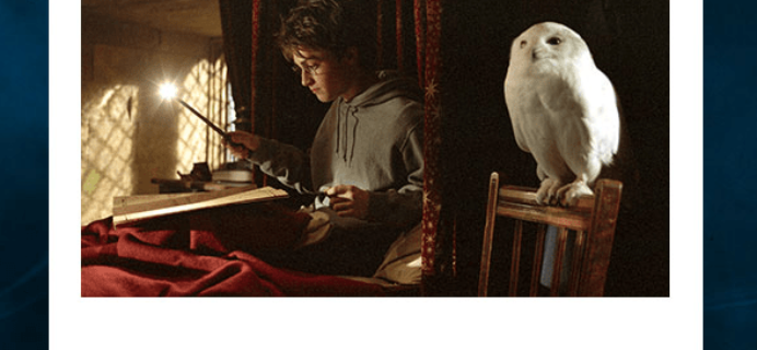 Wizarding World Harry Potter Subscription Coupon: 15% Off!