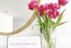 Mommy Mailbox May 2018 20% Off Coupon!