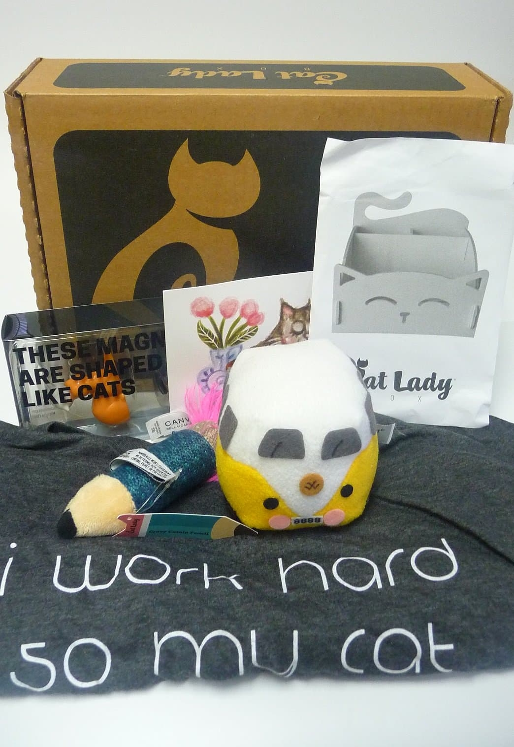 Cat Lady Box August 2017 Subscription Box Review + Coupon