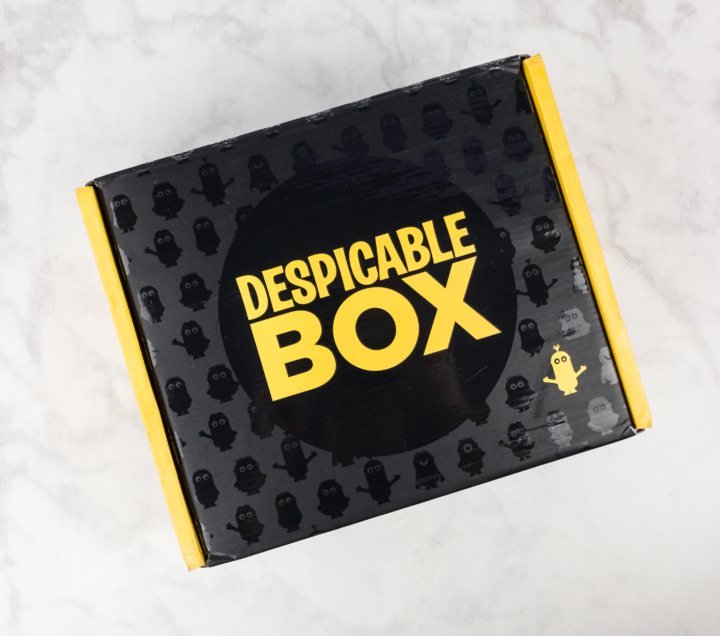 The Despicable Box Summer 2017 Subscription Box Review Coupon