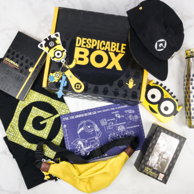 The Despicable Box Summer 2017 Subscription Box Review + Coupon