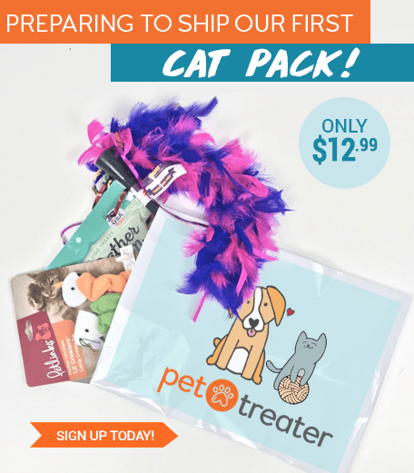 New Pet Treater Cat Pack Monthly Subscription Available Now!