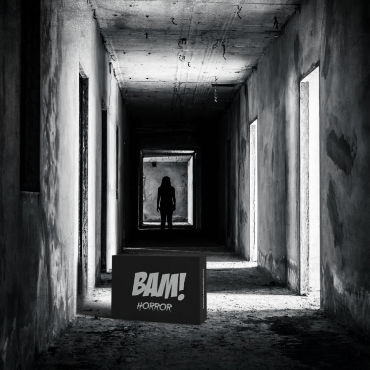 The BAM! Horror Box November 2019 Spoiler #1!