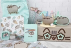 Pusheen Box Summer 2017 Subscription Box Review