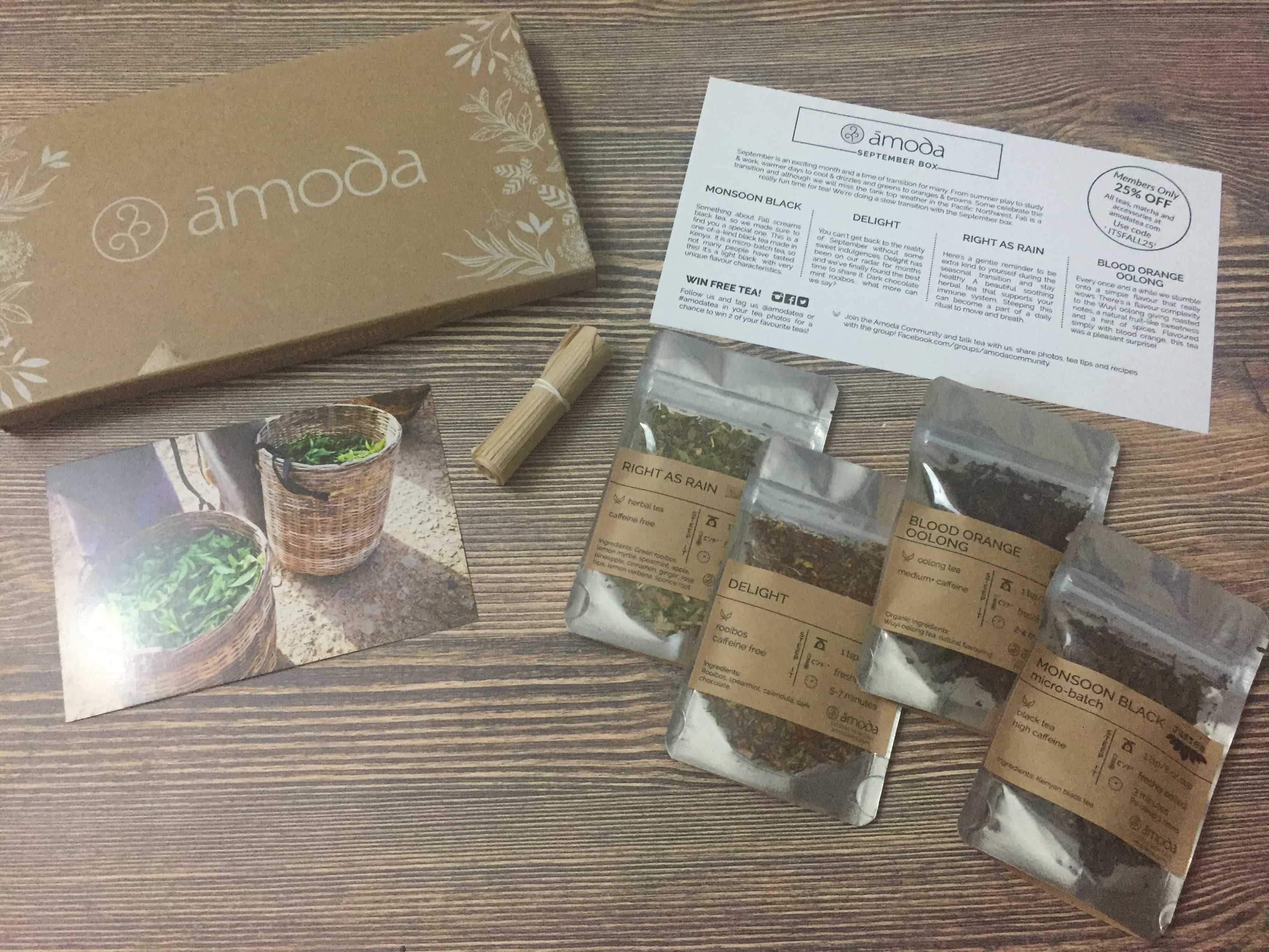 Amoda Tea September 2017 Subscription Box Review + Coupon!