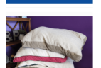 Pet Treater Coupon: Free Dog Bed With Subscription!