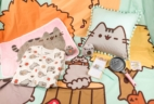 Pusheen Box Fall 2017 Subscription Box Review