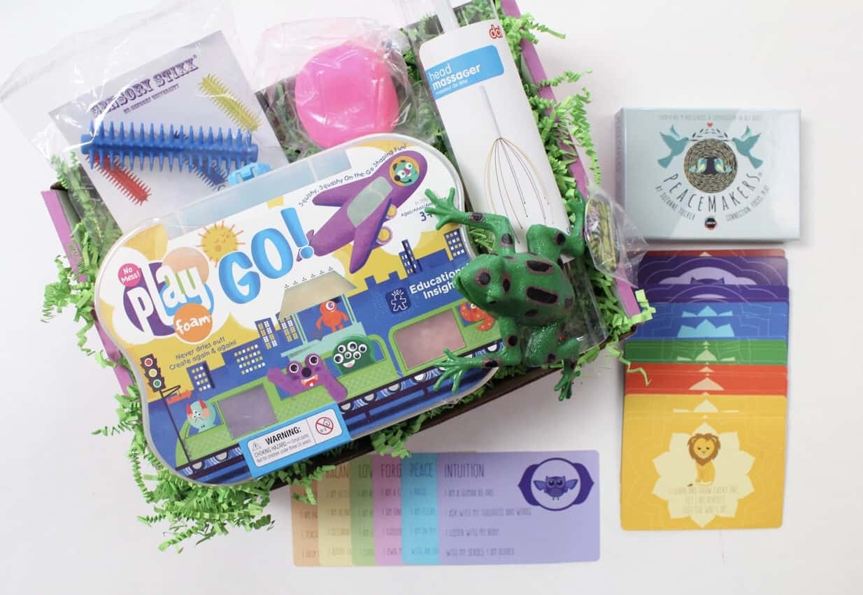 Sensory TheraPLAY Box Cyber Monday 2017 Deal: 15% Off First Month!