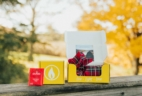 Vellabox 2017 Black Friday Coupon: 40% Off First Month + $7 Off Prepaid!