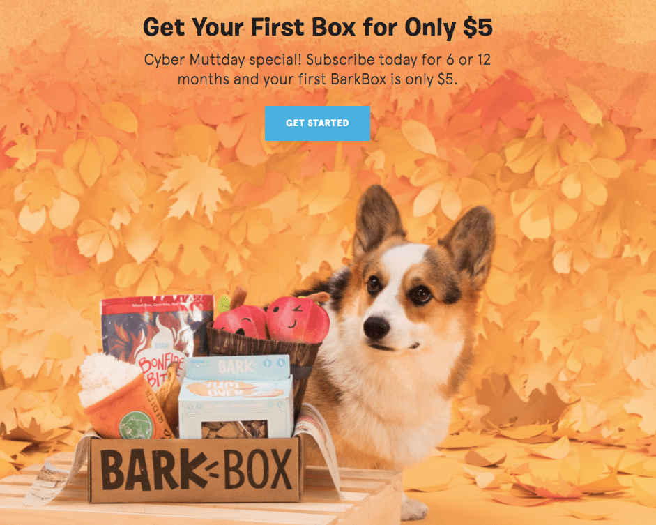 BLACK FRIDAY ENDS TONIGHT BarkBox Sale: First Box $5 with 6+ Month Subscription!