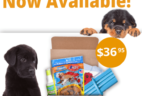 Pooch Perks Welcome Home Puppy Kit Now Available + Coupon!