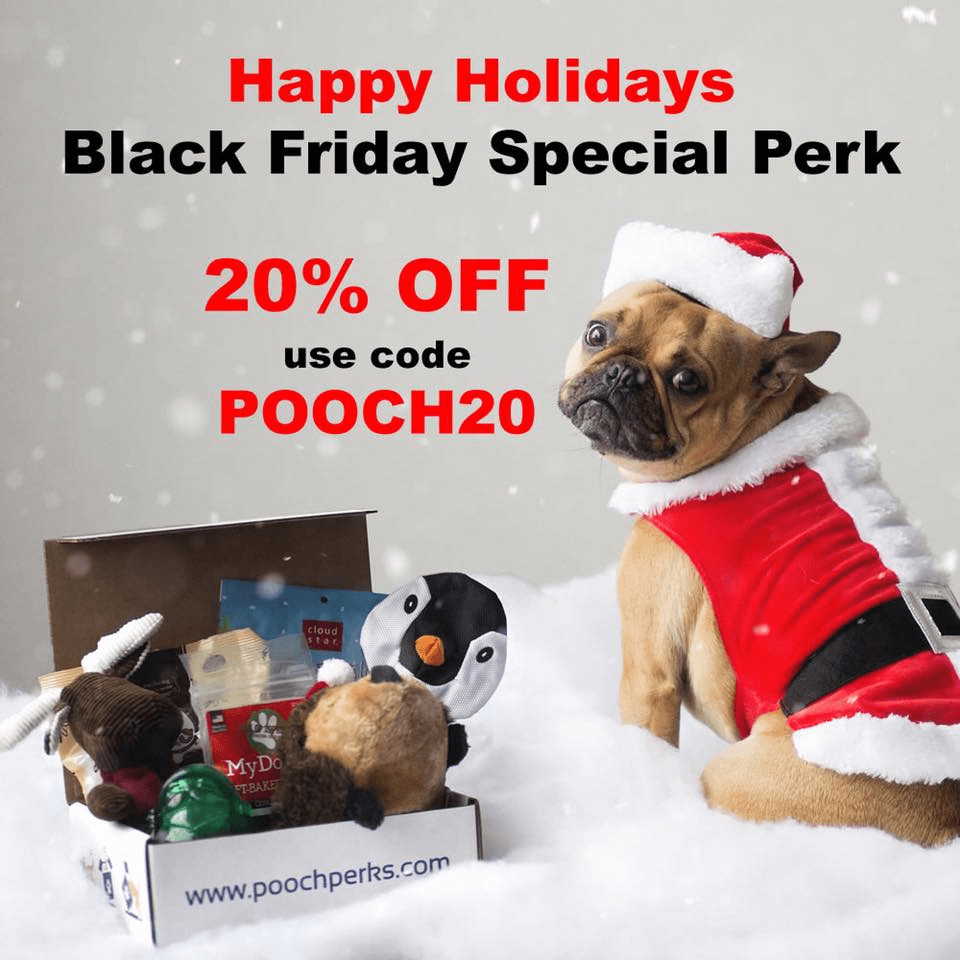 Pooch Perks Black Friday Sale: Save 20% Off Subscriptions! *