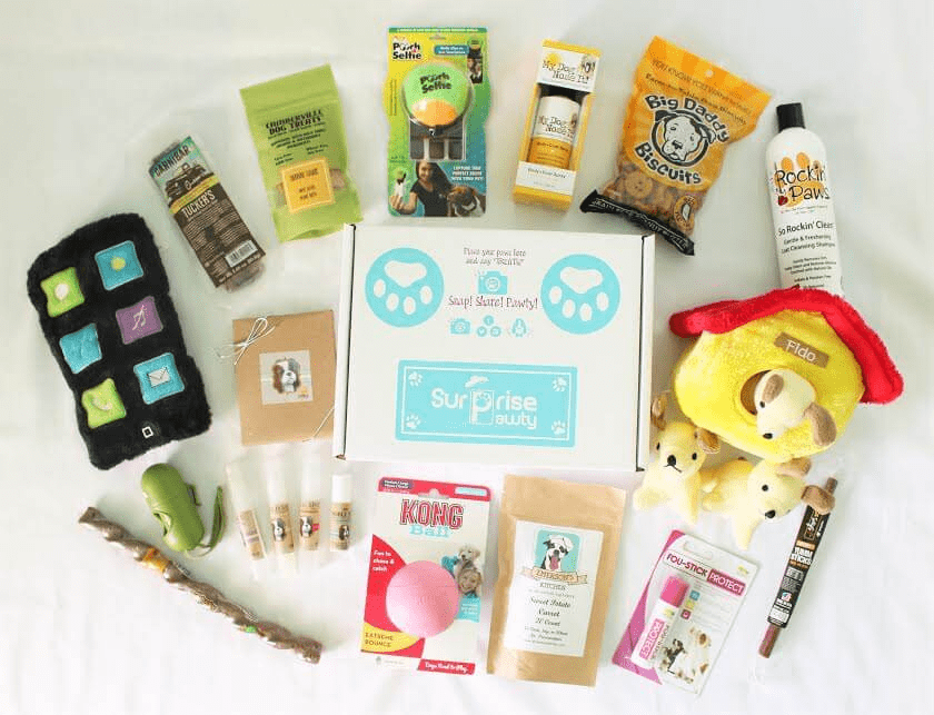Surprise Pawty Subscription Box Sunday Coupon: Save 20% on any subscription!