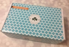 Sealed with Irish Love Box November 2017 Subscription Box Review