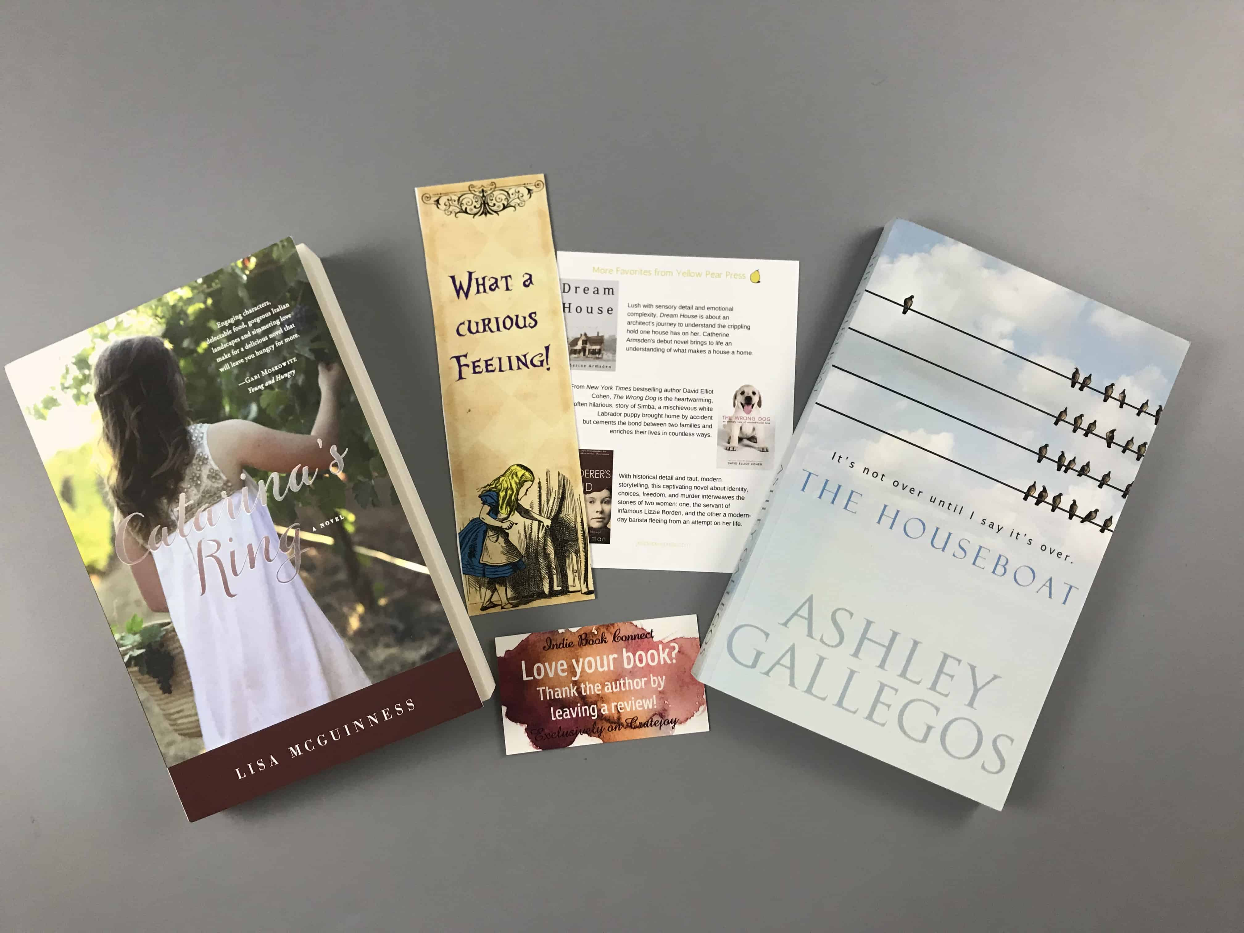 Indie Book Connect Subscription Box Review + Coupon – January 2018