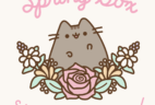 Pusheen Box Spring 2018 Full Spoilers!