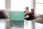 Ecocentric Mom Box FREE Gift With Subscription!