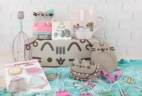 Pusheen Box Winter 2017 Subscription Box Review