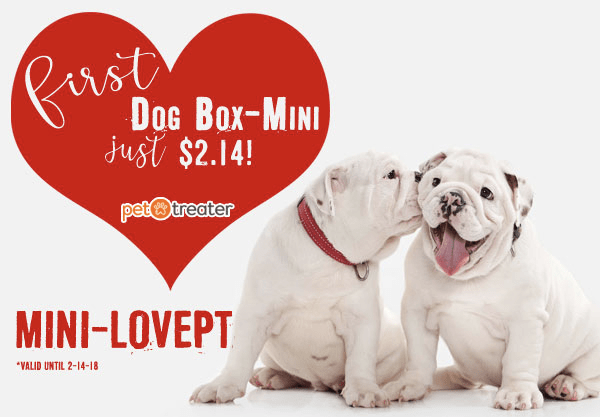 Pet Treater Dog Box Mini – First Box $2.14!