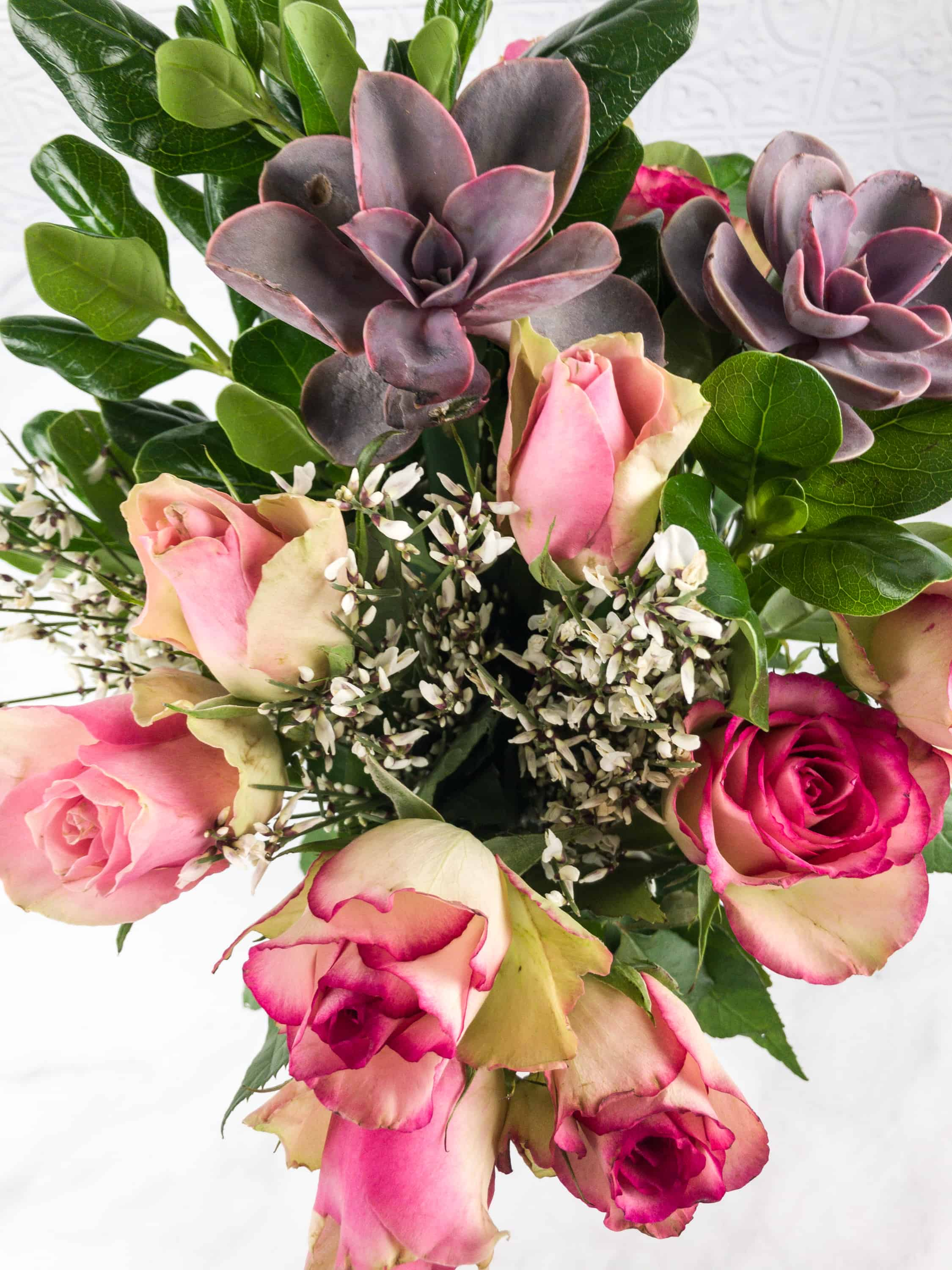 The bouqs february 2018 review coupon hello subscription all the elements work well together and even though there are different colors they blend really well when my roses wilt ill be reusing my new succulents izmirmasajfo