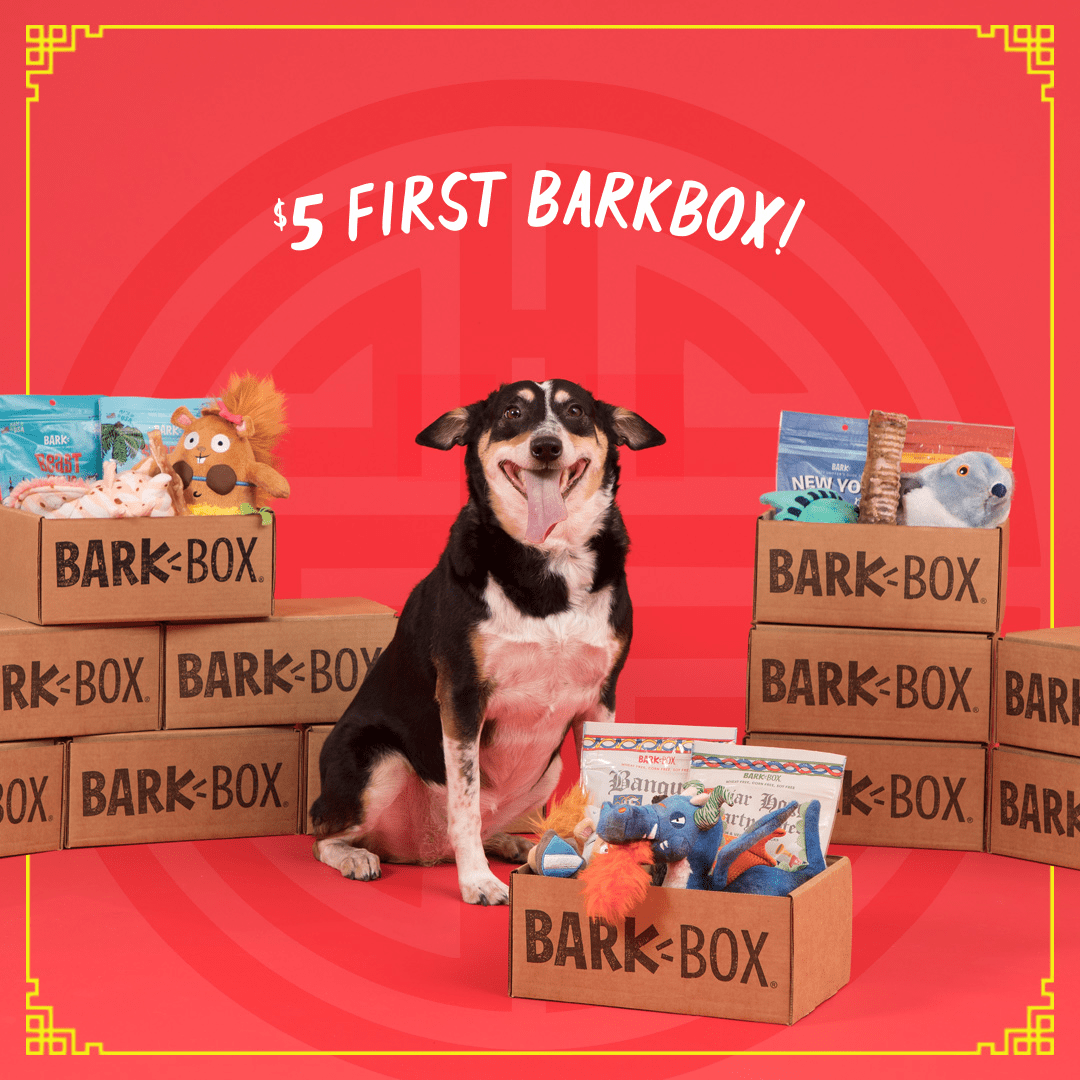 BarkBox Coupon: First Box $5 with 6+ Month Subscription! LAST CALL!