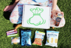 Snack Sack August 2018 Spoilers + Coupon