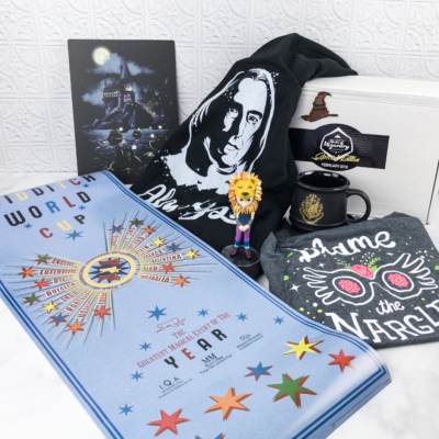 Geek Gear World of Wizardry February 2018 Special Edition Box Review