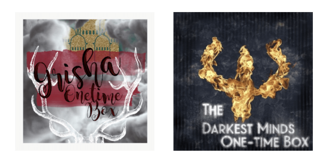 The Bookish Box: Grishaverse & Darkest Minds Limited Edition Boxes Available Now!