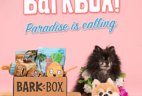 BarkBox Coupon: First Box $5 with 6+ Month Subscription! LAST DAY!