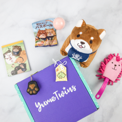 YumeTwins March 2018 Subscription Box Review + Coupon