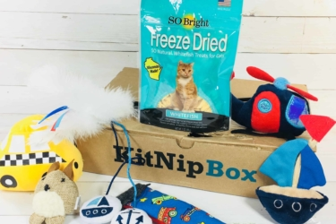 KitNipBox Cat Subscription Box Black Friday Deal: 25% Off First Month!