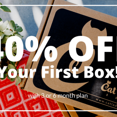 Cat Lady Box Deal: Get 40% Off Your First Box!