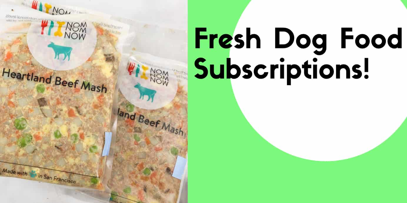 Best Fresh Dog Food Subscription Boxes
