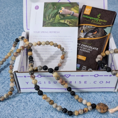 Yogi Surprise Jewelry Box Subscription Review + Coupon – April 2018