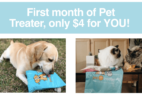 Get Your First Month Of Pet Treater Dog Box Mini Or Cat Pack For Only $4!
