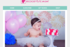 Ecocentric Mom July 4th Flash Sale: Save 15% Off Sitewide!