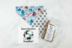 Bark Bandanas SwagBag Subscription Box Review & Coupon – July 2018